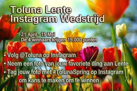 toluna-spring-NL